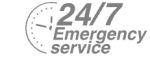 24/7 Emergency Service Pest Control in Grays, Badgers Dene, RM17. Call Now! 020 8166 9746
