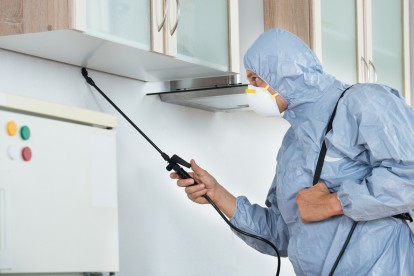 Home Pest Control, Pest Control in Grays, Badgers Dene, RM17. Call Now 020 8166 9746